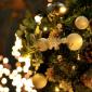 Kerst inbrekers links laten liggen - PKVW